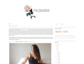 blog.fieldguided.com screenshot