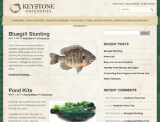 blog.keystonehatcheries.com screenshot
