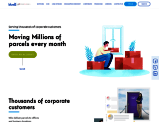 blue-ex.com screenshot