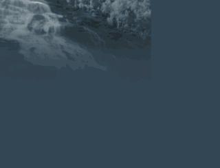 bluebook.is screenshot