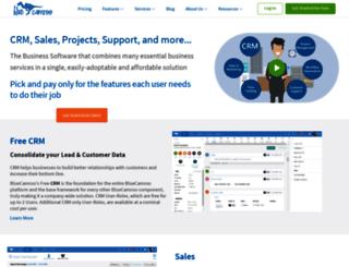 bluecamroo.com screenshot