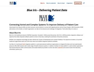 blueiris.com screenshot