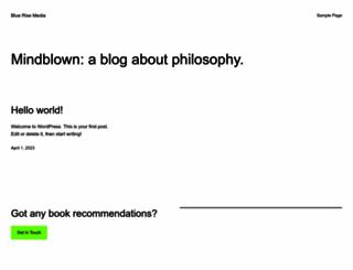 bluerisemedia.com screenshot