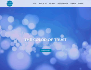 bluespotweb.com screenshot