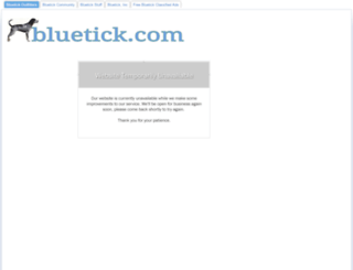bluetick.com screenshot