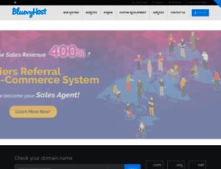 bluevyhost.com screenshot