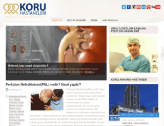 bobrek-tasi.org screenshot