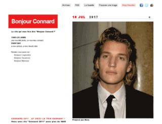 bonjourconnard.fr screenshot
