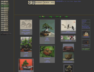 bonsai-insel.de screenshot