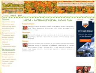 bookflowers.ru screenshot