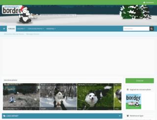 border-collie.fr screenshot