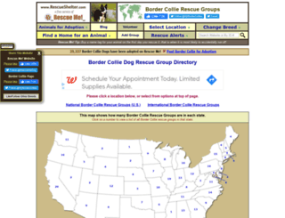 bordercollie.rescueshelter.com screenshot