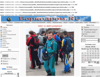 borkodrom.ru screenshot