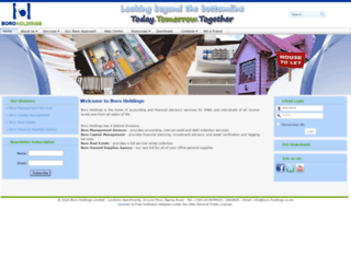 boro-holdings.com screenshot