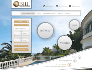 bri-chasseurimmobilier.com screenshot