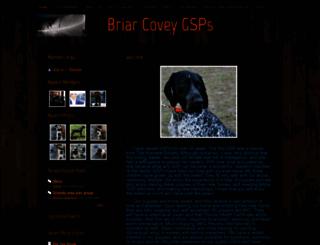 briarcoveygsp.com screenshot