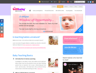 brillbaby.com screenshot