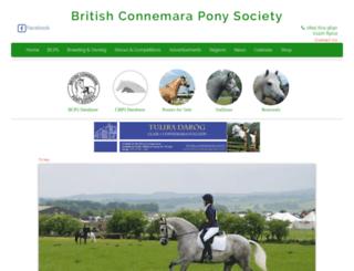 britishconnemaras.co.uk screenshot