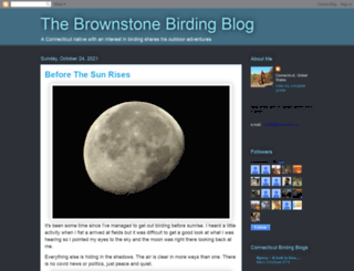brownstonebirder.blogspot.com screenshot