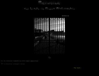 brunowolkowitch.com screenshot