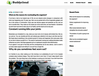 buddycloud.org screenshot