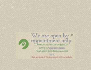 buddydoghs.com screenshot