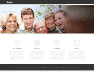 budiz.com screenshot