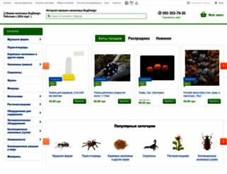 bugdesign.com.ua screenshot