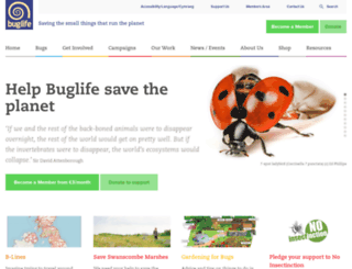 buglife.org.uk screenshot