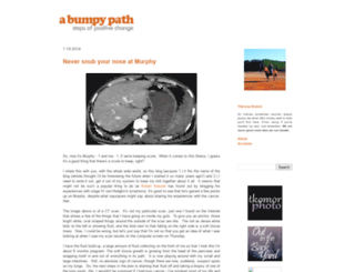 bumpypath.blogspot.com screenshot