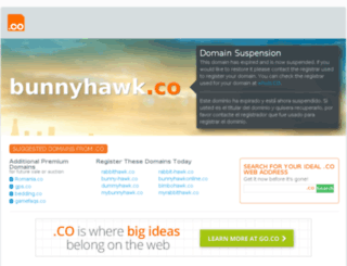 bunnyhawk.co screenshot