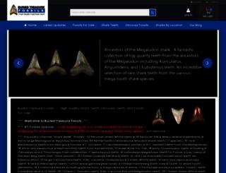 buriedtreasurefossils.com screenshot
