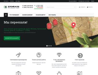 busiki.ru screenshot
