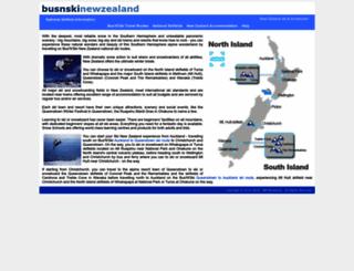 busnski.com screenshot