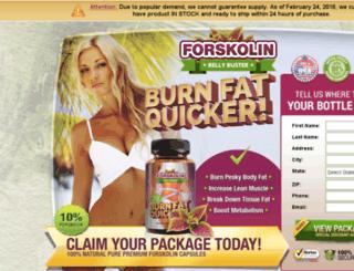 buyforskolinnow.com screenshot
