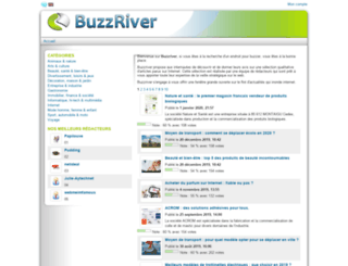 buzzriver.fr screenshot