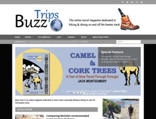 buzztrips.co.uk screenshot