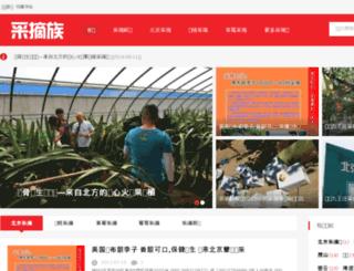caizhaizu.com screenshot