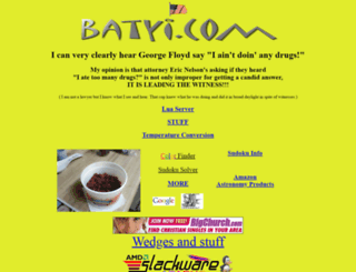 camera.batyi.com screenshot
