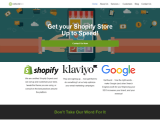 carlowseo.com screenshot