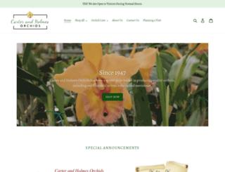 carterandholmes.com screenshot