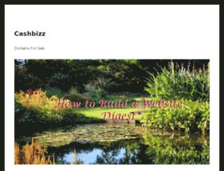 cashbizz.com screenshot
