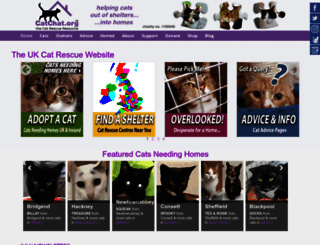 catchat.org screenshot