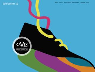 cavex.es screenshot