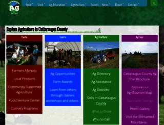 ccaghelp.com screenshot