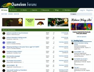 chameleonforums.com screenshot