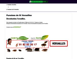 chateauversaillesspectacles.fr screenshot