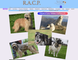 chiens-des-pyrenees.com screenshot