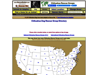 chihuahua.rescueshelter.com screenshot