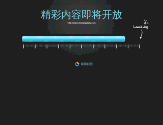 chinabigdata.com screenshot